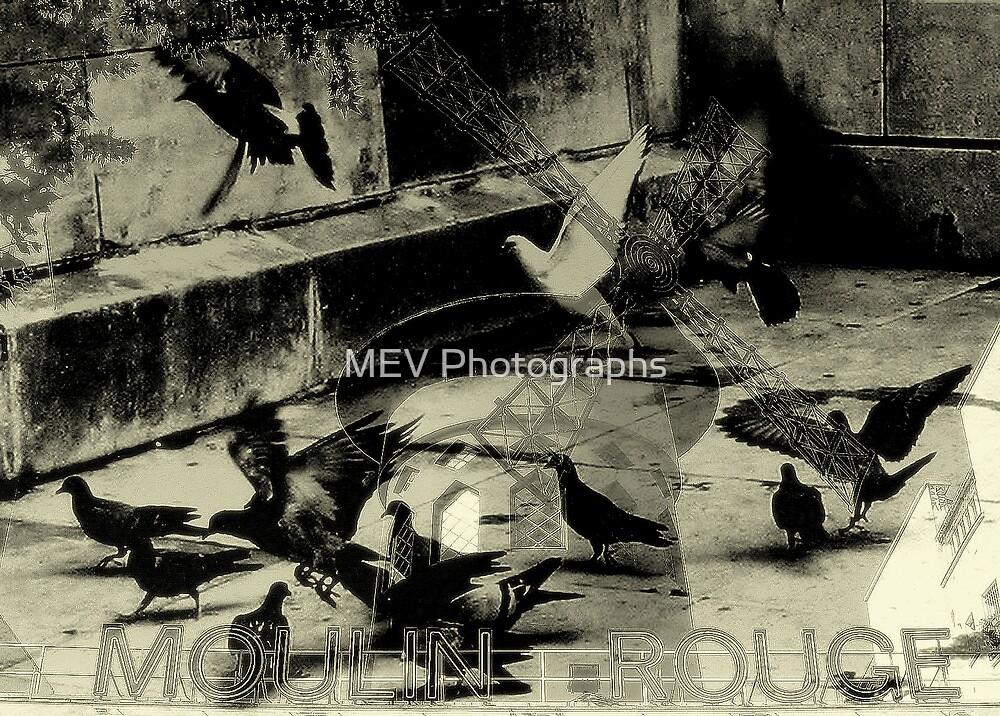 Medley-2 by MEV Photographs