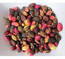Pink pistachios Photographic Print