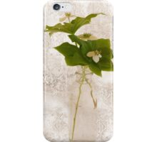 Still Life Of Dogwood - Bunch Berry Blossoms  iPhone Case/Skin