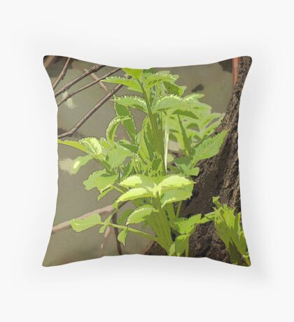 Plant Stem Growing on Tree Throw Pillow