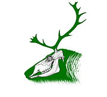 Rudolph the Green Reindeer Photographic Print