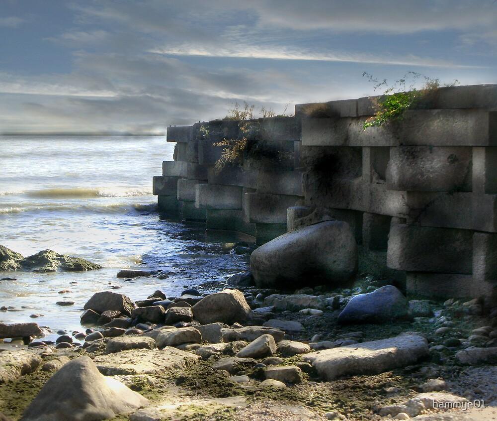 Rocky Pier by hammye01