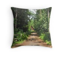 Long Drive Throw Pillow