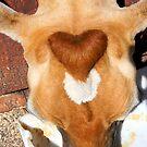 The Love Cow by rosaliemcm
