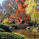 Fall Fantasy by Vivian Sturdivant