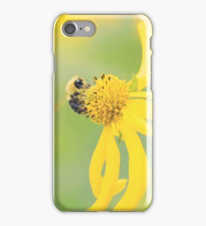 Lazy Sunny Sunday iPhone Case/Skin