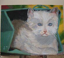 Cat In A Box by Saavvvyyyy