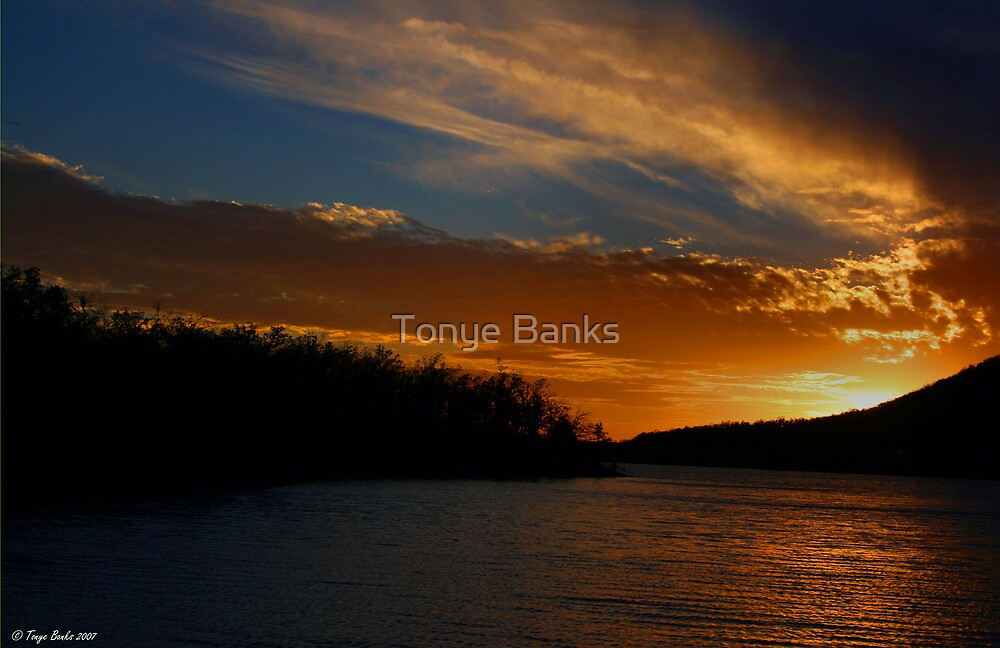 Peace and Quiet by Tonye Banks