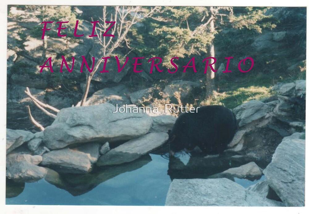 Feliz Anniversario 1 by Johanna  Rutter