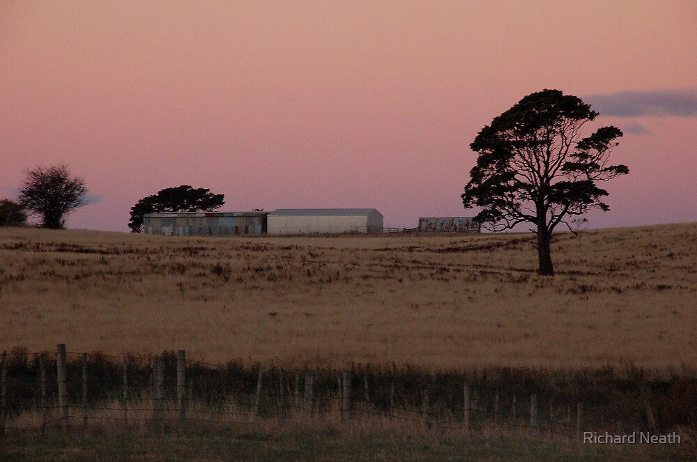 North Motton, Tasmania #2, 2006 by Richard Neath