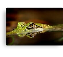 Gator Eyes Canvas Print