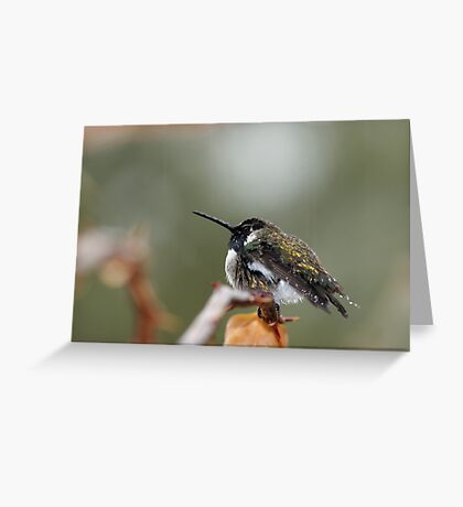 Sitting In The Rain Greeting Card