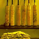 Bats and Pads by Paul Martin