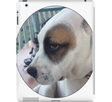 Max The Dog iPad Case/Skin