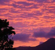 Fiery sunset by Hermann Hanekom