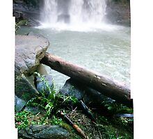 Hopetoun Falls - Nov 2007 by Jeff Moorfoot