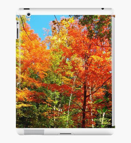 Lords of the forest iPad Case/Skin