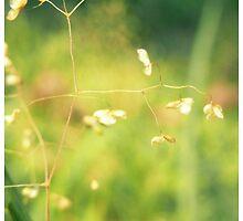 meadow iPad case by Floralynne