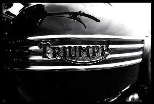 Triumph by Terence J Sullivan