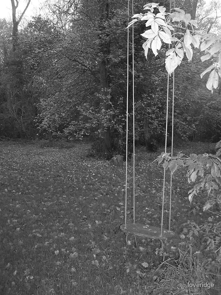 swing by loveridge