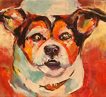 Jack Russell by christine purtle