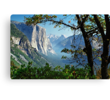 Yosemite Day Canvas Print