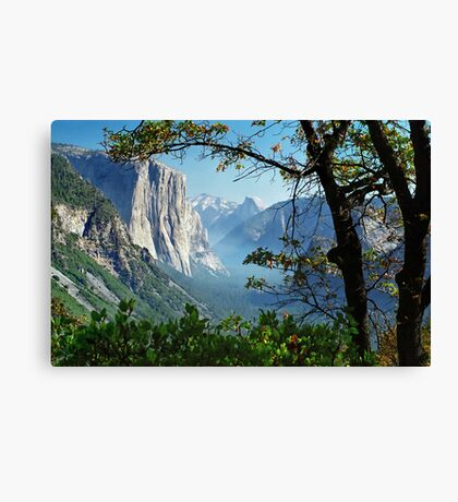 Yosemite Day Canvas Print