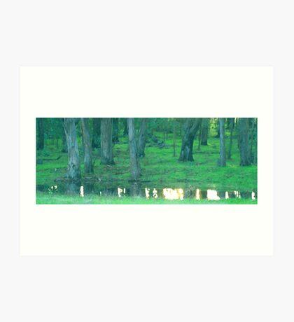 Small Rainfall Pond Art Print