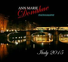 Florence at Night Cover photog by Ann Marie Donahue