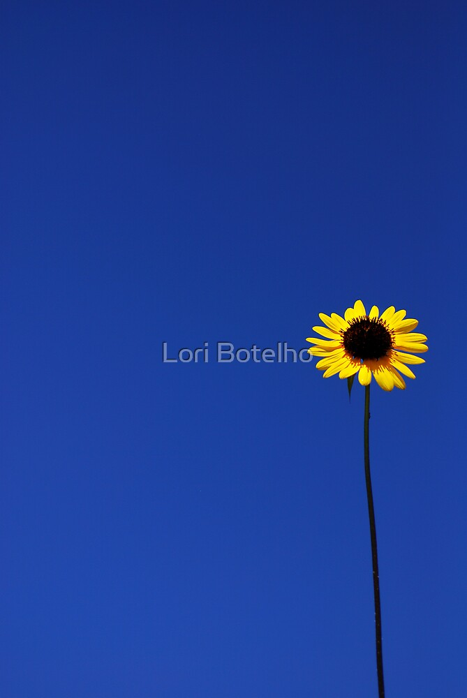 Standing Tall by Lori Botelho