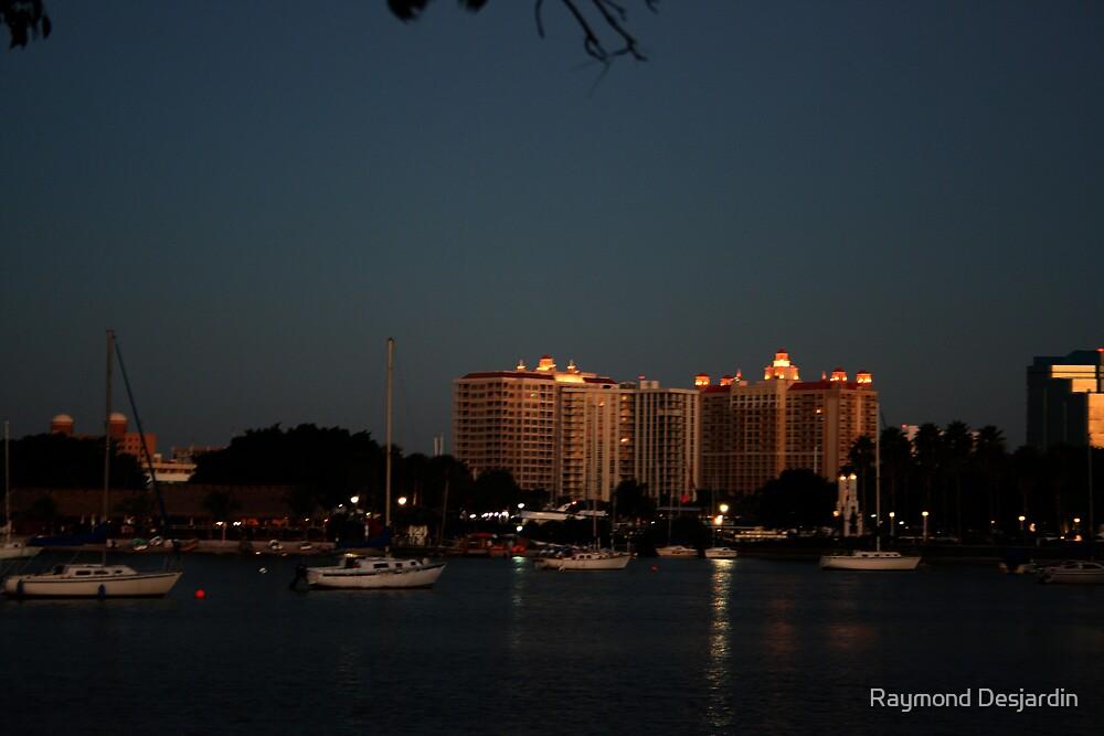 Lights still on by Raymond Desjardin