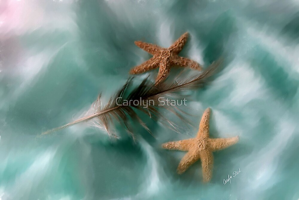 Starfish and Feathers by Carolyn Staut