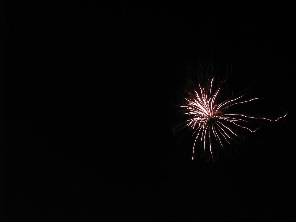 Fireworks! by Alison Mudd
