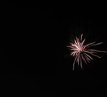 Fireworks! by Alison Mudd