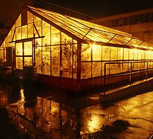 Light House by Mark Ramstead