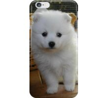 Samoyed #11 iPhone Case/Skin