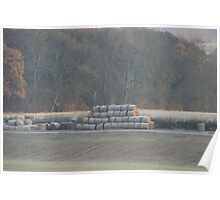 Frosty Bales Poster