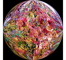 Bright coloured ball Photographic Print
