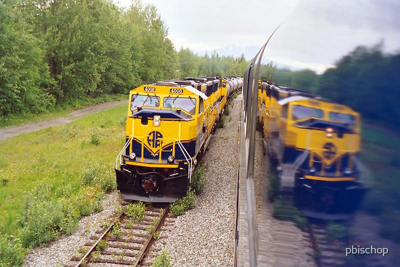 Alaska Rail Road by pbischop