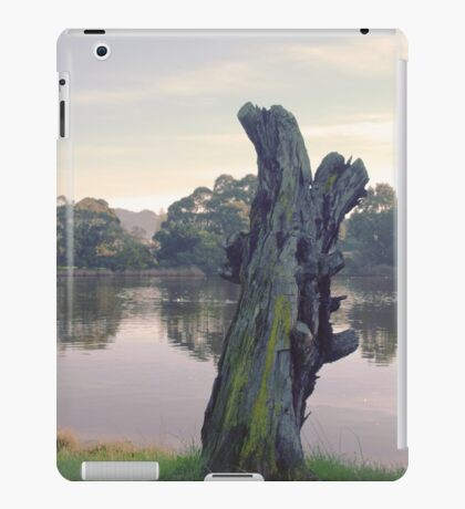 Morning Light - Lake Shore Tree Stump iPad Case/Skin