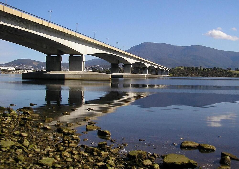 Bridge at Hobart by terryk