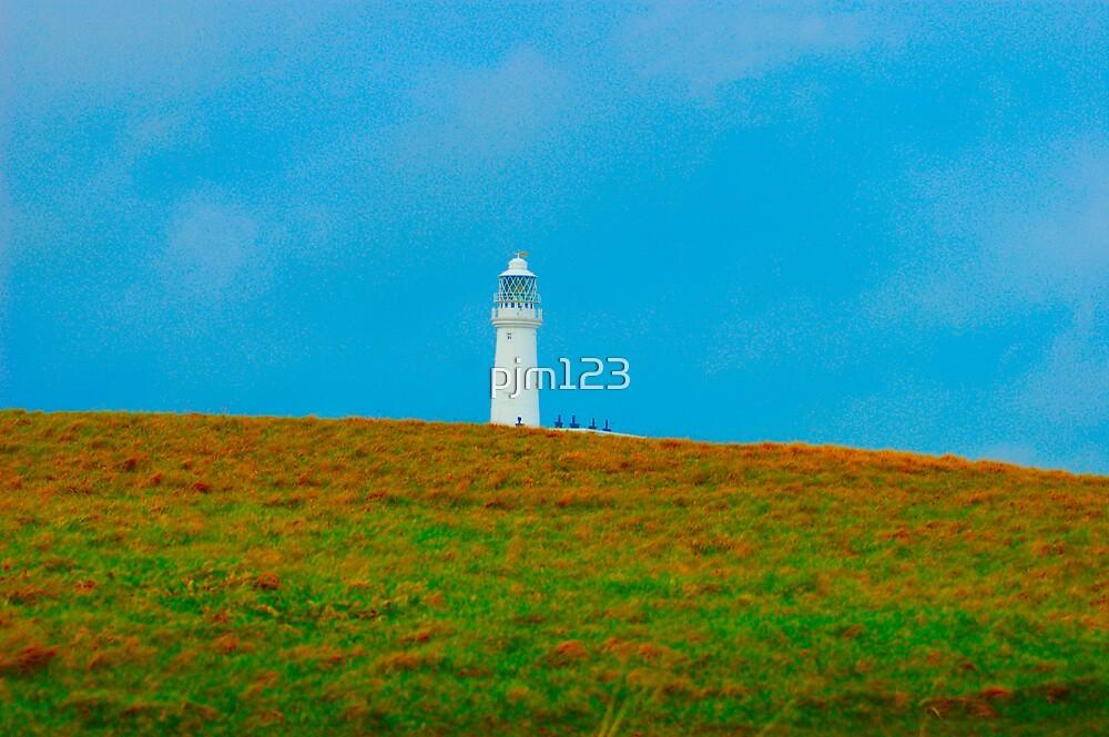 seagrass by pjm123