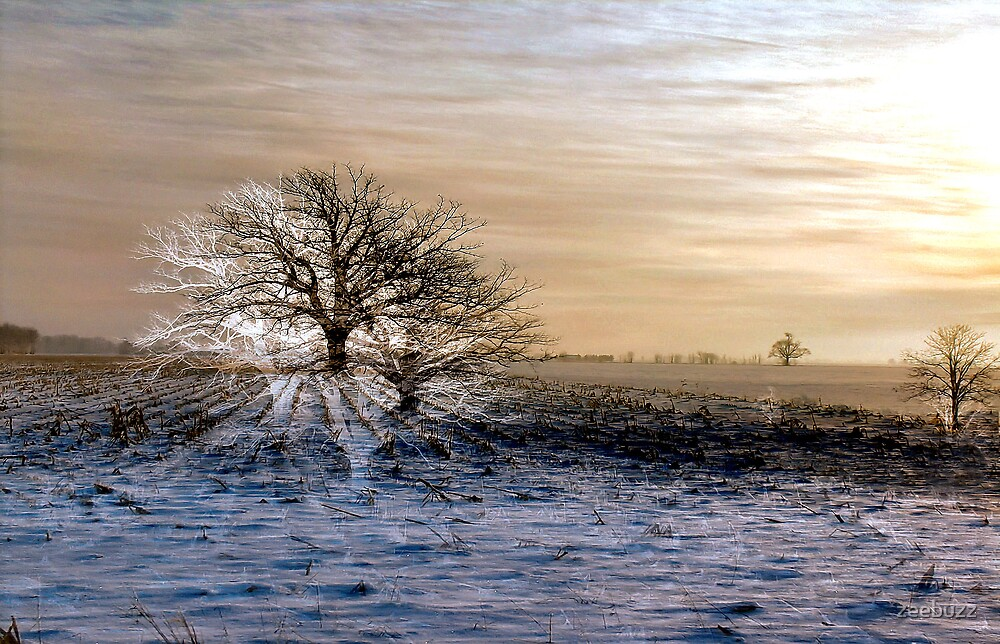 Winterscape With Ghosts by zeebuzz