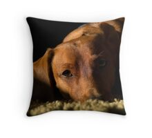 Sebastian Throw Pillow