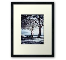 Shadows & Light Framed Print