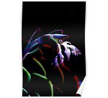 Flower #7 Poster