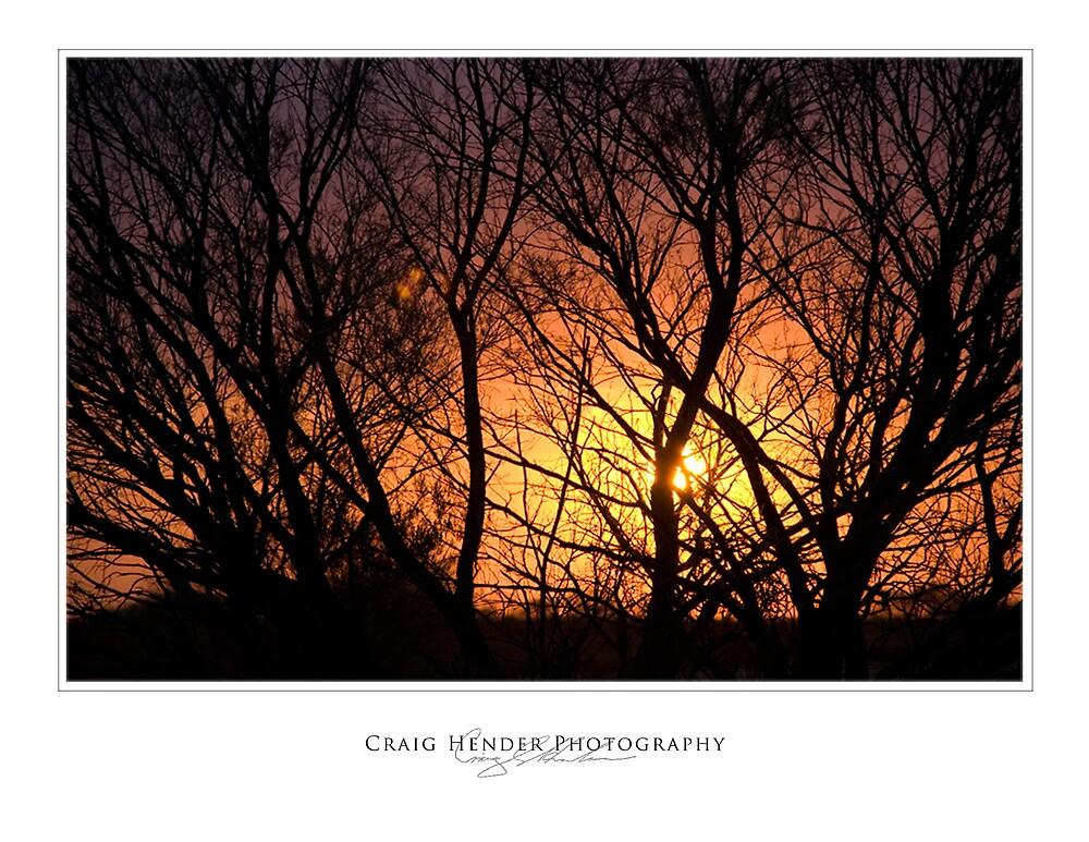 Fire Through the Bushes by Craig Hender