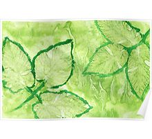 Green Painted Texture with Leaves Poster