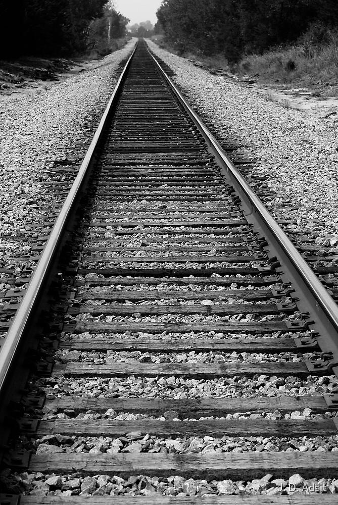 Riding her Rails by J. D. Adsit