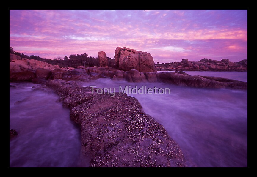 the oyster bridge - Nth Qld. by Tony Middleton
